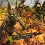 Sinisa Tamamovic – Autumn Colours