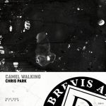 Chris Park – Camel Walking