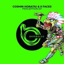 Cosmin Horatiu, II Faces – Perception