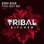Stev Dive – You Got Me