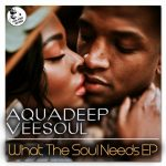 Veesoul, Aquadeep, Craig – What The Soul Needs EP (feat. Craig)