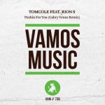TomCole, Rion S – Pushin For You feat. Rion S (Gabry Venus Remix)