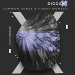 Diggant – Common Sense & Funky Monkey
