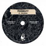 Za__Paradigma – Possibility
