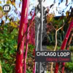 Chicago Loop – Edging Closer EP