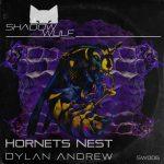 Dylan Andrew – Hornet's Nest