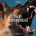 Celestino – Not Interested