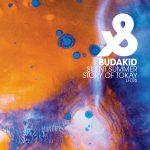 Budakid – Silent Summer / Story Of Tokay
