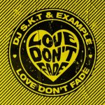 Example, DJ S.K.T – Love Don't Fade