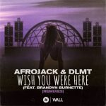 Afrojack, Brandyn Burnette, DLMT – Wish You Were Here (feat. Brandyn Burnette) [Remixes]