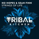 Sean Finn, No Hopes – Strings of Life