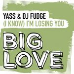 DJ Fudge, Yass – (I Know) I'm Losing You