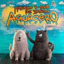 Miguelle, TONS, Irepelusa – Two and a Half Cats