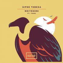 Siphe Tebeka, Toshi – Ndiyekeni