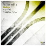 Forest Weed – Choices