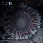 Noise Project Mx – Jardinero EP