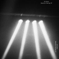 DC Salas – The Beautiful Feelings EP