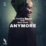 DJ Tomer, Ricardo – Anymore (feat. Nuzu Deep)