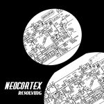 Neocortex – Resolving