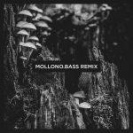 Mollono.Bass, Stephan Zovsky – The Orb (Mollono.Bass Remix