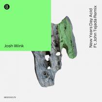 Josh Wink – New Years Day Acid