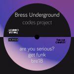 Bress Underground – Codes Project